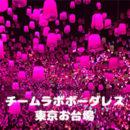 【チームラボボーダレス】東京お台場に行ってきました